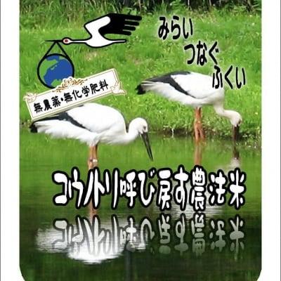 【福井県越前地方産】無農薬コシヒカリ 玄米1kg 【店頭受け渡し用】