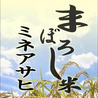 【愛知県豊田産】ミネアサヒ 玄米1kg 【店頭受け渡し用】