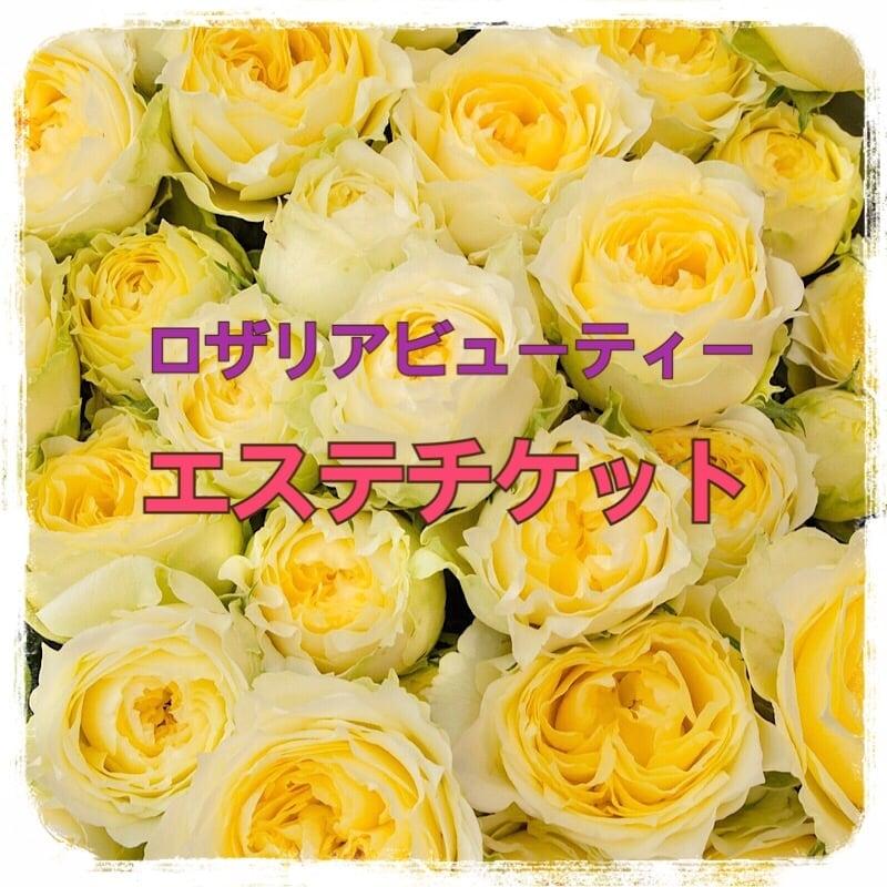 ロザリアビューティー5万円エステチケットのイメージその1