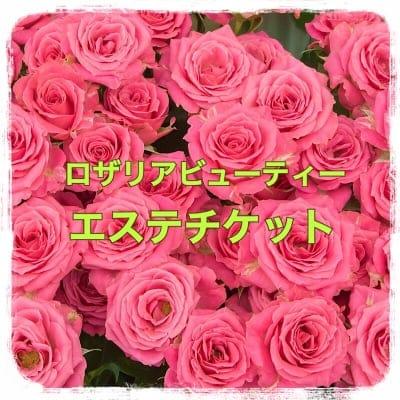 ロザリアビューティ25万円エステチケット