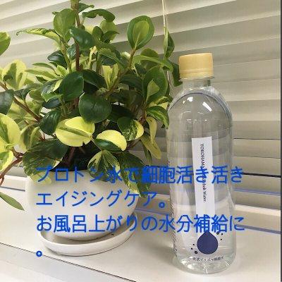 横濱プラズマ解離水|24本入【1ケース】