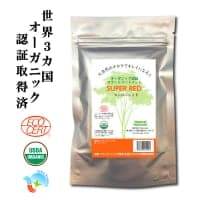 ナチュラルヘアケア オーガニックヘナ 100%天然植物ヘアカラー スーパーレッド <オレンジ色> メール便専用|3袋までとなります