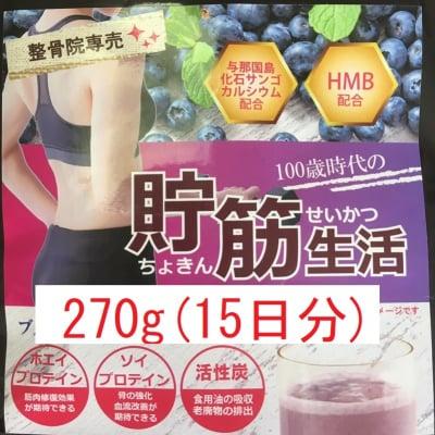 高機能プロテイン270g(15日分)ブルーベリー味