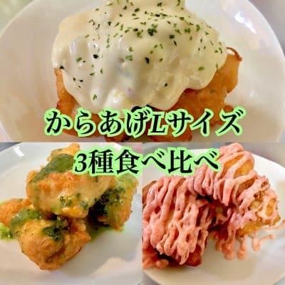 【店頭よりお得】からあげLサイズ(250g約10〜12個程度)3種食べ比べチケット