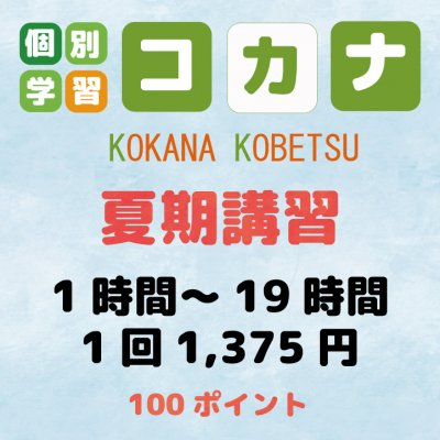 【現地払い専用】夏期講習1時間〜19時間1コマ60分