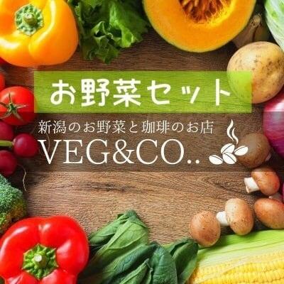 株式会社ワンネス様専用野菜セット