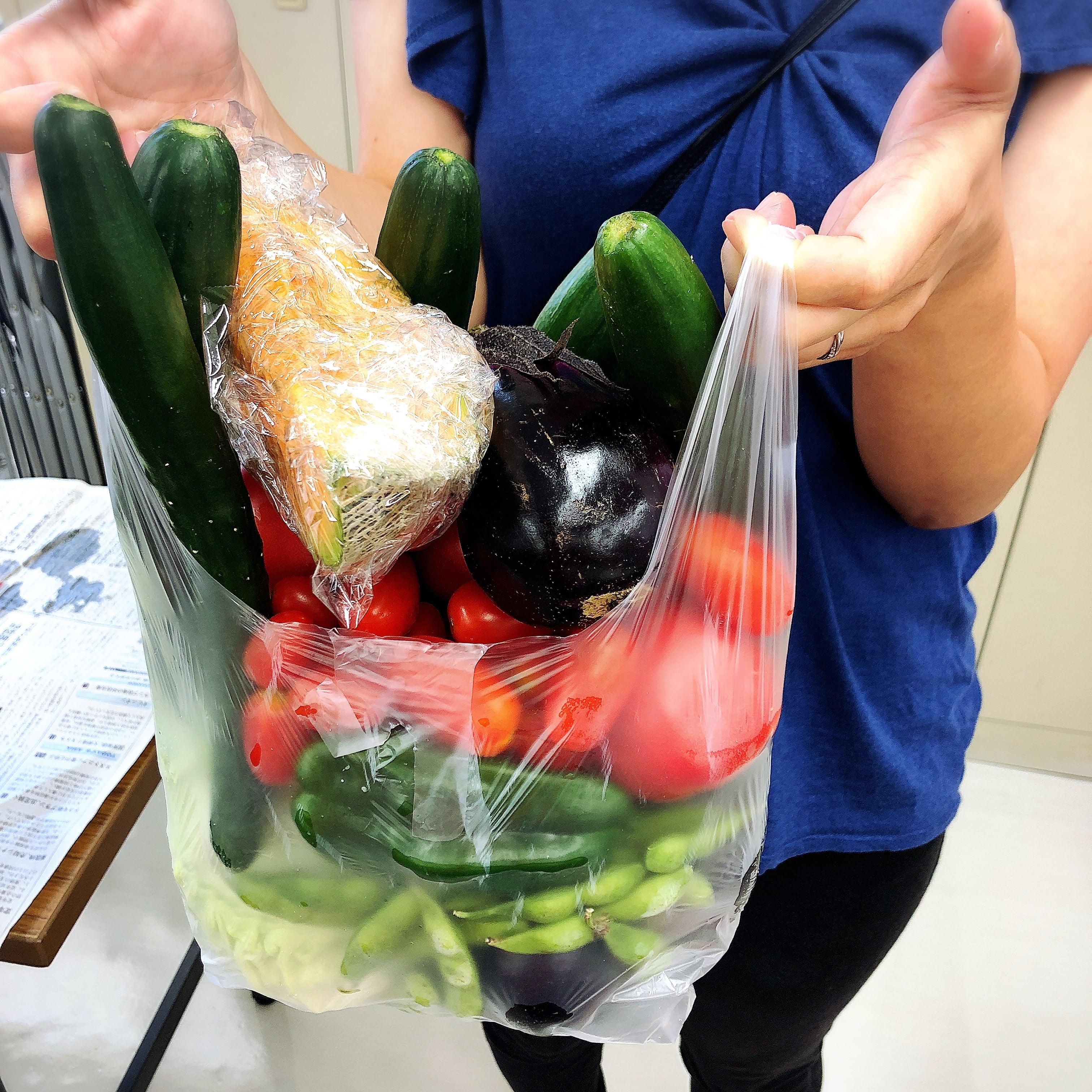 駅南マルシェ限定!野菜詰め放題500円のイメージその2
