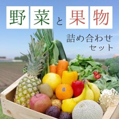 石田様専用グレープフルーツ&お野菜セット
