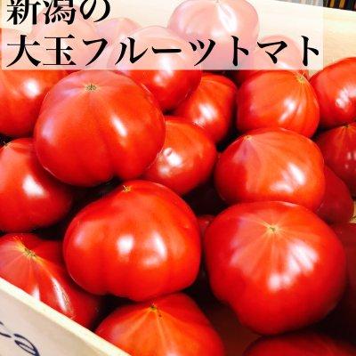 6月10日まで高ポイント還元/新潟県産大玉フルーツトマト4キロ箱M〜Lサイズ16〜23玉