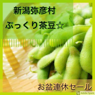 横山様専用/枝豆贈答品セット