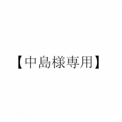 【中島様専用】