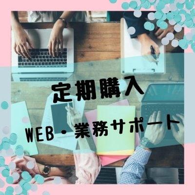 【定期購入】WEBオールプラン+業務サポート