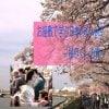 【開催終了!】お座敷で学ぶ日本の心vol.9〜桜尽くしの宵〜