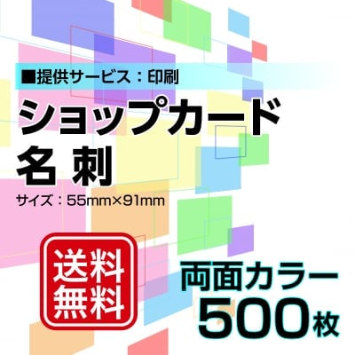名刺・ショップカード印刷【データ支給】 片面カラー 500枚
