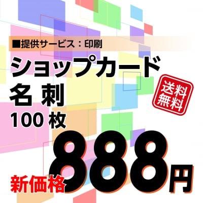 888円名刺・ショップカード印刷【データ支給】