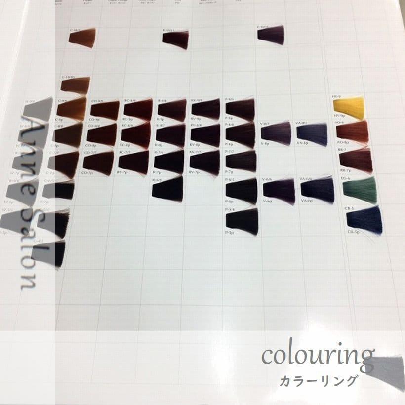 Colorカラー ロング(L)のイメージその1