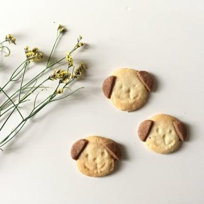 【グルテンフリー・卵不使用】サクサクままがしワンコクッキー (S)