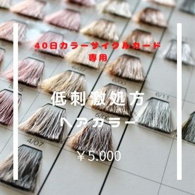 【リピートカラー割引券専用】低刺激性処方ヘアカラー