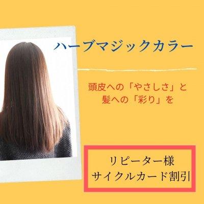 ハーブマジックカラー【リピーター様専用ビューティーチケット割引】