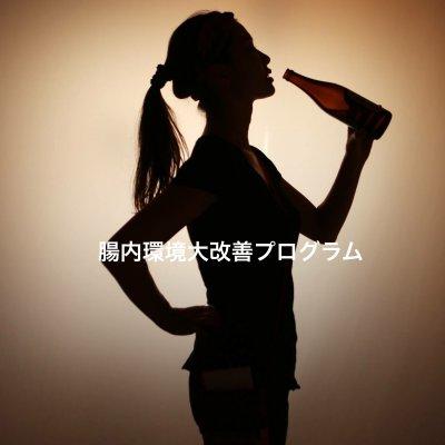 【送料無料】腸内環境大改善プログラム☆バリューパック