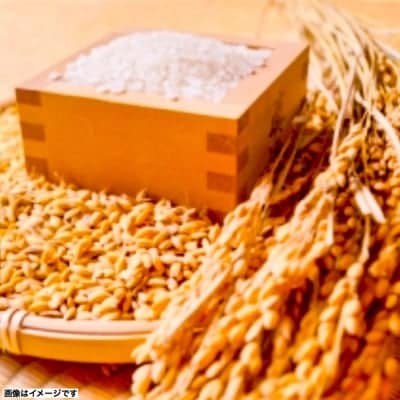昔の品種の為現在希少です。徳島県 30年度あけぼの 5キロ 無肥料・無農薬