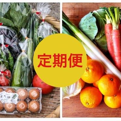 芝橋さんのお野菜定期便「Mサイズ」約5.5kg+おまけ