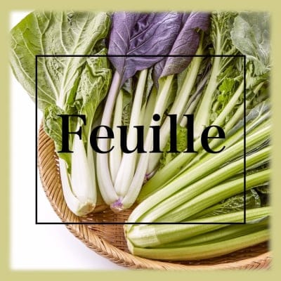 Feuille 「葉の野菜ミニセット」徳島産