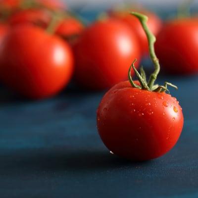 我が家の子供たちの大好物!? 農薬不使用ミニトマト 1kg