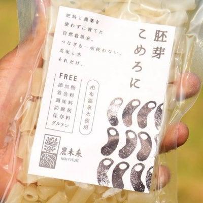 添加物・着色料・保存料・調味料・防腐剤・グルテン、オールフリー! 原材料 米と水だけ。 胚芽こめろに