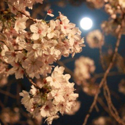 2021/3/29㈯ 〜満月春の開運ランチ会〜