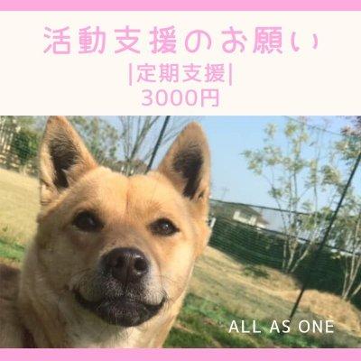 |定期|ALL AS ONE 活動支援のお願い|3000円