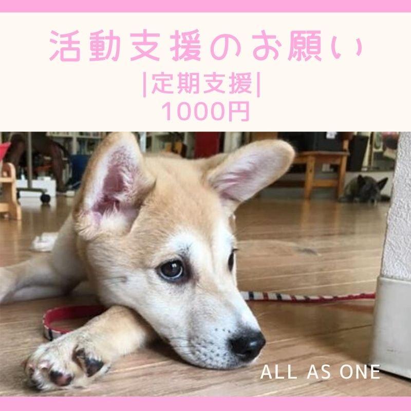  月々定期応援 ALL AS ONE 活動支援のお願い 1000円のイメージその1