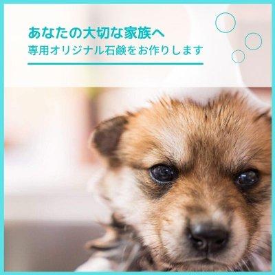 完全オーダーメイド犬用無添加石鹸