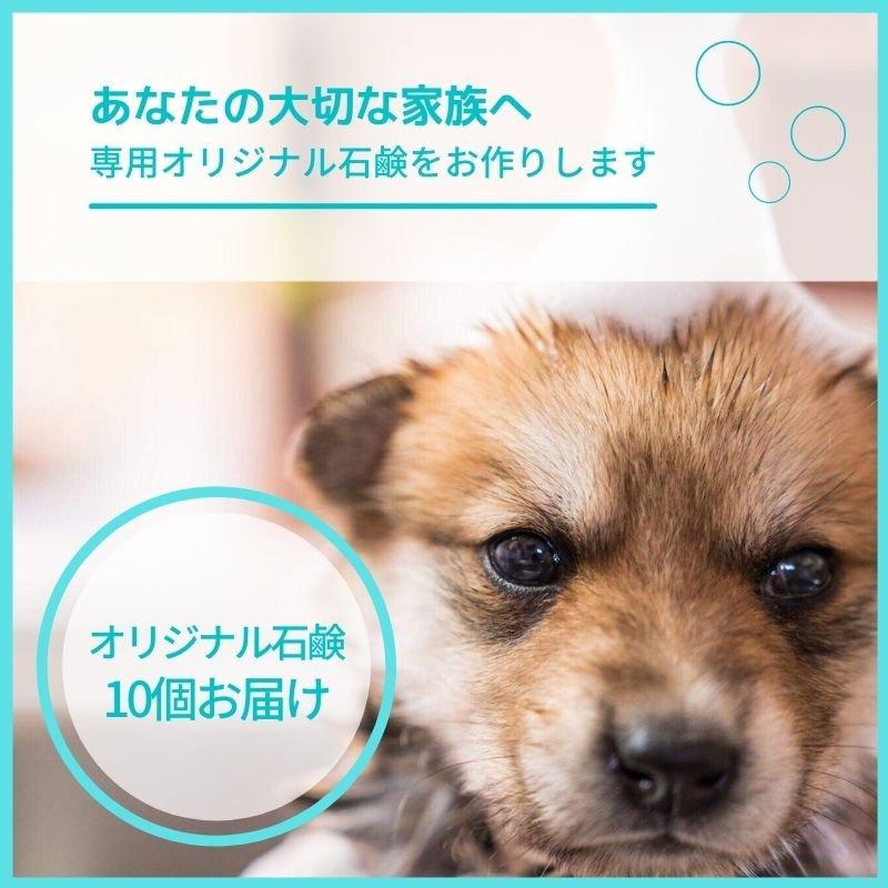 完全オーダーメイド犬用無添加石鹸|石鹸10個のイメージその1