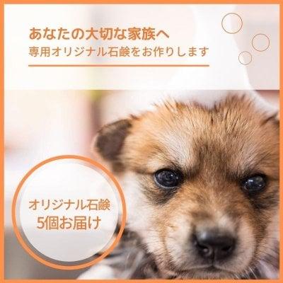 完全オーダーメイド犬用無添加石鹸|石鹸5個