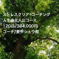 今、話題の ストレスクリア®コーチング人生の主人公コース 120日/384,000円