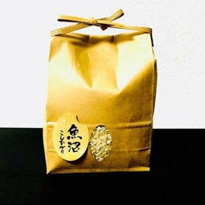 ゼム酵素玄米・魚沼コシヒカリ「数量限定」☆新潟県塩沢産「無農薬栽培米」5キロ|神田米店
