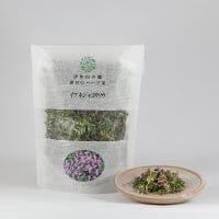 【癒される香りのハーブ茶】イブキジャコウソウ
