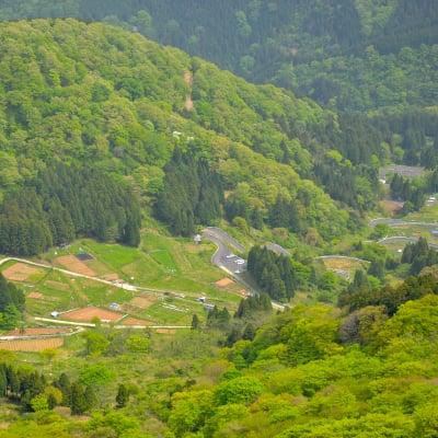 【満員御礼】marcoスタッフと行く平成最後の伊吹山麓フィールドワークツアー