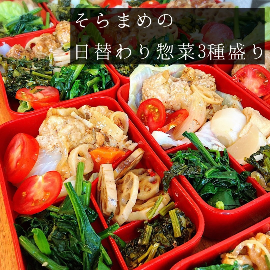 日替わりでヘルシーな食事/季節の野菜のお惣菜詰め合わせ3種盛りのイメージその1