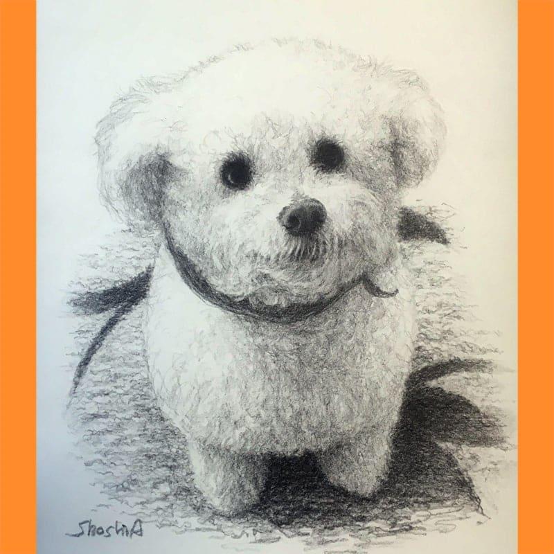オリジナル 鉛筆画 ポートレートのイメージその2