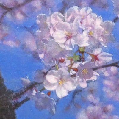 【日本画】佐藤宏三画伯 「桜花」No.4