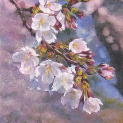 【日本画】佐藤宏三画伯 「桜花」No.5