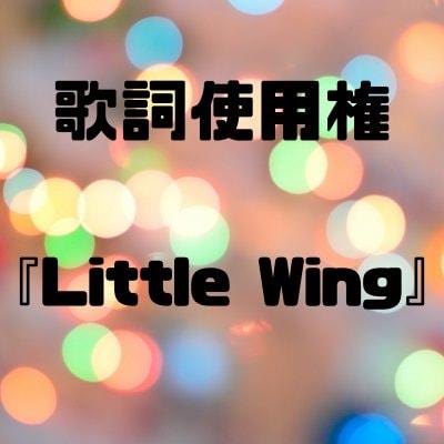 【歌詞使用権】Little Wing