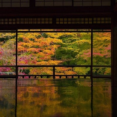 《京都》 瑠璃光院