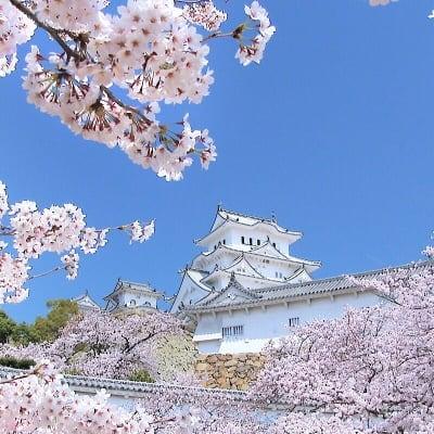 《兵庫県》姫路城