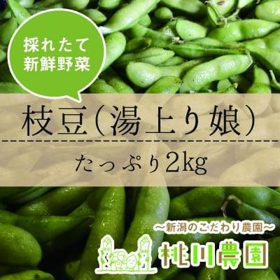 【桃川農園】枝豆(湯上り娘)2㎏セット【新潟より直送】
