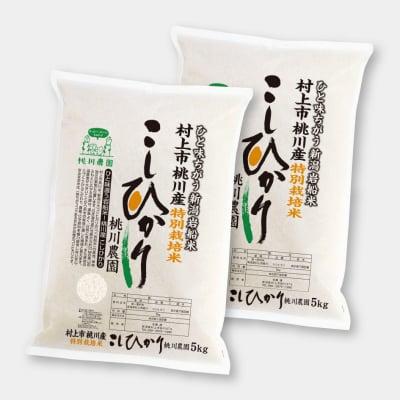 【令和元年村上市桃川農園産の新米】特別栽培米桃川産こしひかり精米【5kg×2個セット】