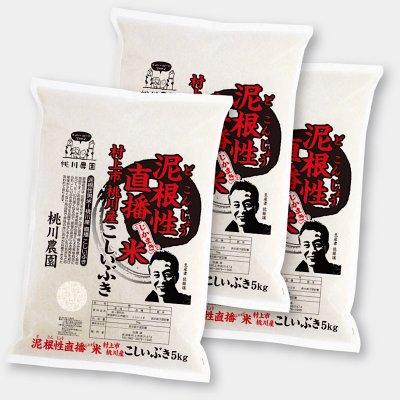 【令和二年村上市桃川農園産の新米】泥根性米!桃川産こしいぶき精米【5kg×3個セット】