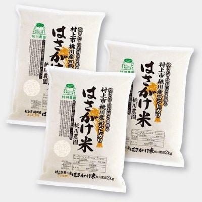 【令和二年村上市桃川農園産の新米】特別栽培米桃川産特選こしひかりはさがけ米6キロ【2kg×3個セット】